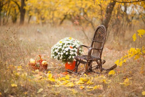 wicker chair fall